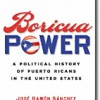 "A Review of ""Boricua Power"""
