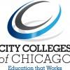 Los Colegios de la Ciudad de Chicago Presentan una Casa Abierta de Doble Inscripción