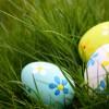 Caza de Huevos en los Distritos de Parques de la Ciudad