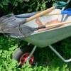 El Distrito de North Berwyn Park Presenta 'Limpieza en la Ciudad 'Piensa Verde'