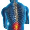 Octubre Mes de Concientización de la Salud de la Espina Dorsal