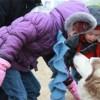 Diversión Familiar en los Días de Aventura Polar del Distrito de Parques de Chicago