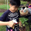 Registration Now Open For Chicago Botanic Garden's Nature-Inspired Summer Camp For Special Needs Children