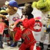 'Benny the Bull' Celebrates Birthday with Fans