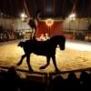 Zoppé Italian Circus Comes to Chicago
