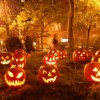 """Berwyn Park District Hosts New Event, """"All Hallow's Eve"""""""
