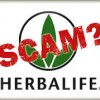 Brighton Park Neighborhood Council Launches Illinois Herbalife Victim ID Program
