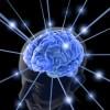 'Maintain Your Brain' Program