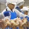 Trying to Keep the Poultry Workers Safe