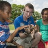 Chill Out with Live Entertainment, Food, and Family Fun at Brookfield Zoo's Summer Nights