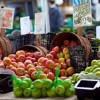South Loop to Welcome New Farmers Market