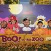 El ¡Boo! Anual del Zoológico de Brookfield ofrece Diversión de Halloween para las Familias