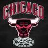 Entradas a la Temporada Regular de los Bulls están a la Venta