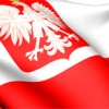 The Polish Undocumented
