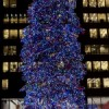 Tree Lighting Ceremony Set in Millennium Park