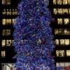 Tree Lighting Ceremony Set in Millennium Park