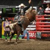 Saddle Up: Top Bull Riders to Compete at the Allstate Arena
