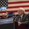 Bernie Falls Short in Illinois