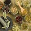 Curandero: Understanding Latino Folk Medicine