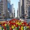 """La Milla Cultural de Chicago Inicia la Temporada con """"Un Brindis a la Primavera"""""""