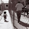 Report Finds: 186,000 Illinois children have a parent who has been incarcerated