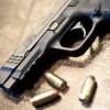 Elected Officials Demanding Action to Stop Assault Weapons