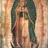 Tributo de Fin de Semana a Nuestra Señora de Guadalupe