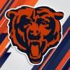 Vamos Bears