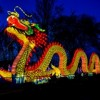 Inaugural Chinese Lantern Festival Comes to Milwaukee in October
