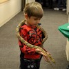 The Peggy Notebaert Nature Museum Hosts Night of Cold-Blooded Fun
