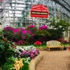 Garfield Park Conservatory's Spring Flower Show to Feature Botanical Cubs' World Series Trophy