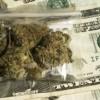 La Asamblea General de Illinois Considera Terminar la Prohibición de la Mariguana, Regulando y Gravando a la Mariguana para Uso Adulto