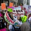 Illinois Business Immigration Coalition (IBIC) Publica Declaración Sobre la Revocación de DACA