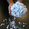 Community Savings Bank Held Another Popular Shred-A-Thon