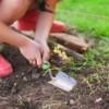 Los Jóvenes Jardineros Comen Más Frutas y Verduras en el Primer Año de Universidad