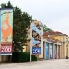 Día Frío en el Zoológico de Brookfield