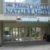 Voluntariado en el Museo de Naturaleza Notebaert