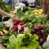 13º Reunión Cumbre de Política de Comida de Chicago Ofrecida por Chicago Food Policy Action Council