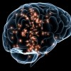 Ignite Your Brain