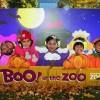 El Boo! Anual de Brookfield Zoo en el Zoológico Aumenta la Diversión de Halloween