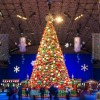 'Tis the Season for Fifth Third Bank Winter WonderFest