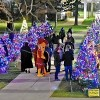 Join Triton College's Annual #DecktheMounds Holiday Festival of Trees