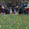 Eggs Up for Grabs in the South Loop