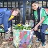 Lincoln Park Zoo, el Shedd Aquarium y Brookfield Zoo anuncian Eventos Familiares en Pro del Ambiente