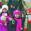 Kids Invited to Help Trim the Holiday Tree at Community Savings Bank
