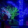 Brookfield Zoo Lights up for the 38th Year of Holiday Magic
