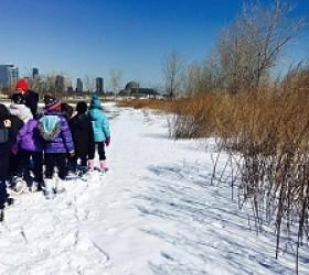 El Distrito de Parques de Chicago Abre Inscripción en Línea para Programas de Invierno