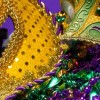 Wicker Park Mardi Gras Party to serve as Fund-Raiser