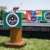 El Distrito de Parques de Chicago Aceptará Presentaciones de Artistas para las Noches en los Parques del 2021