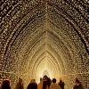 Luces Festivas, Destellos y Magia Navideña